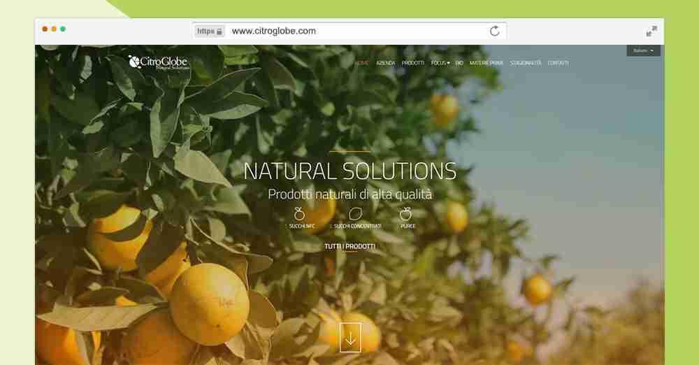 homepage-citroglobe-design-esclusivo-sito-wev
